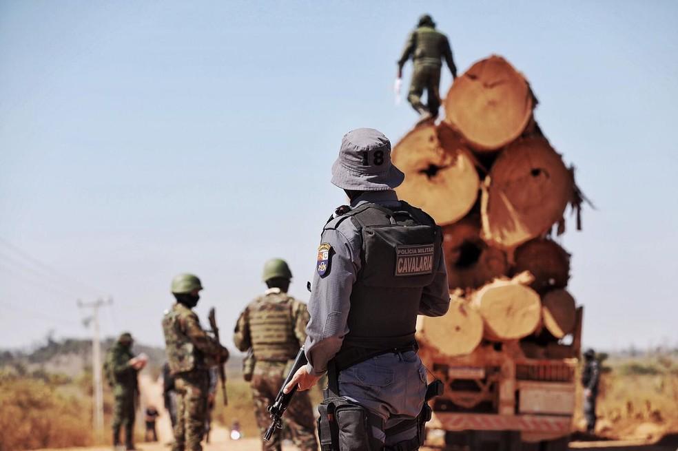 Operação combate o desmatamento na Amazônia - Foto: Christiano Antonucci / Secom-MT