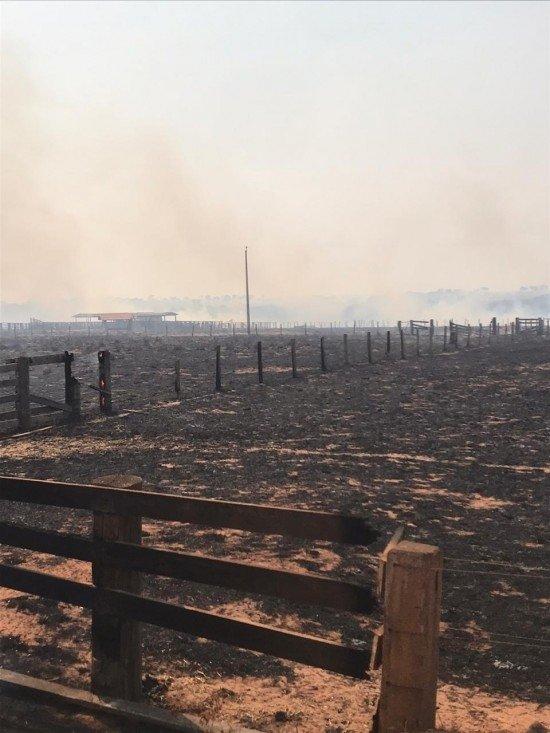 Incêndio destrói cerca de 80 hectares de pastagem e mata na região do Castanhal