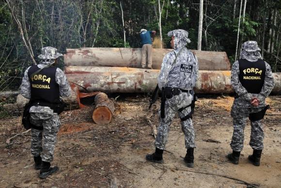 Força Nacional vai reforçar combate ao desmatamento no Pará