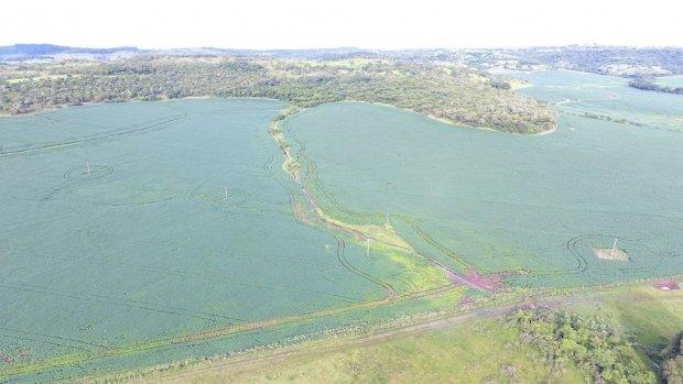 ICMBio quer ampliar áreas de preservação no Pantanal em MT e produtores rurais vão a Brasília contra aprovação de projeto