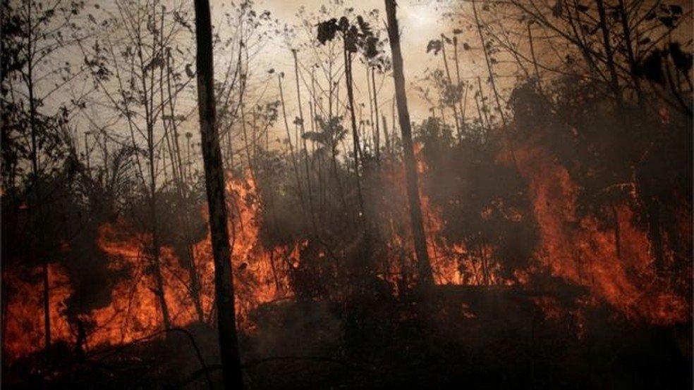 Como a 'MP da grilagem' pode mudar o mapa de regiões da Amazônia