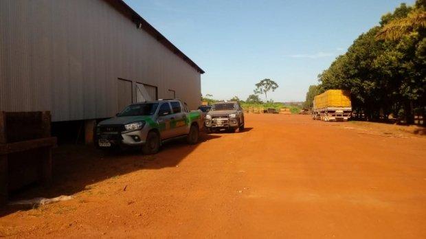 Polícia Federal descobre esquema de R$ 15 milhões e bloqueia contas, carros e aviões de madeireiros
