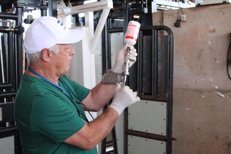 Indea prorroga etapa de vacinação contra a febre aftosa em Mato Grosso