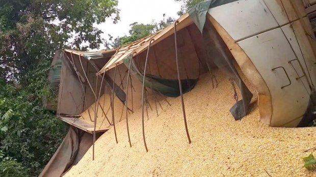 Caminhão tomba e tem mais de 12 toneladas de milho saqueadas