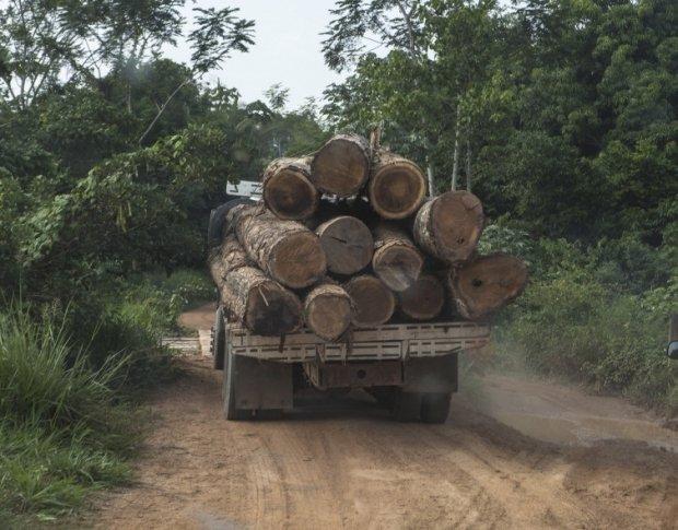 Fazenda é invadida por criminosos armados que ameaçam retirar madeira de manejo florestal