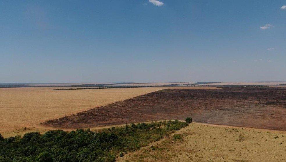 Donos de fazendas em MT são multados em mais de R$ 3,4 milhões por queimadas durante período proibitivo