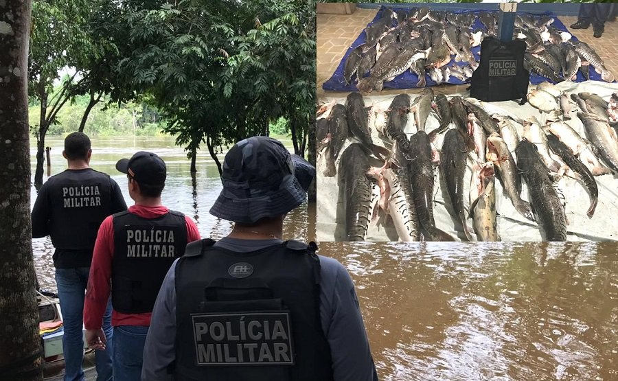 Mais de 730 kg de pescado são apreendidos em fiscalização da Policia Militar em Aripuanã