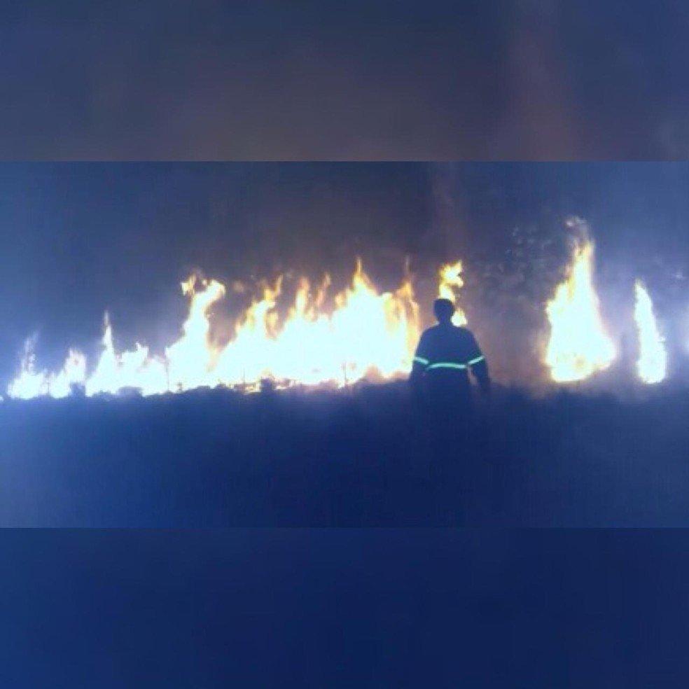 Terra indígena tem mais de 20 mil hectares de vegetação destruídos pelo fogo em MT