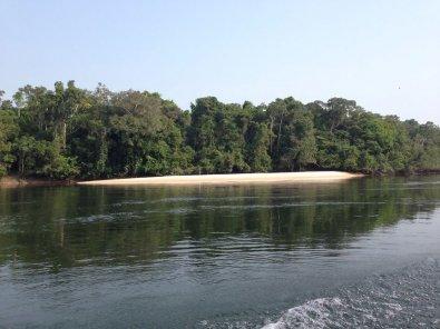 Pescador cai de barco e morre afogado em MT