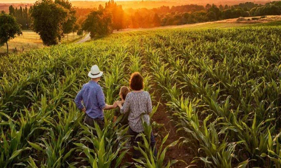 Câmara de Colniza nomeia membros da Comissão de Agricultura e Reforma Agrária Rural