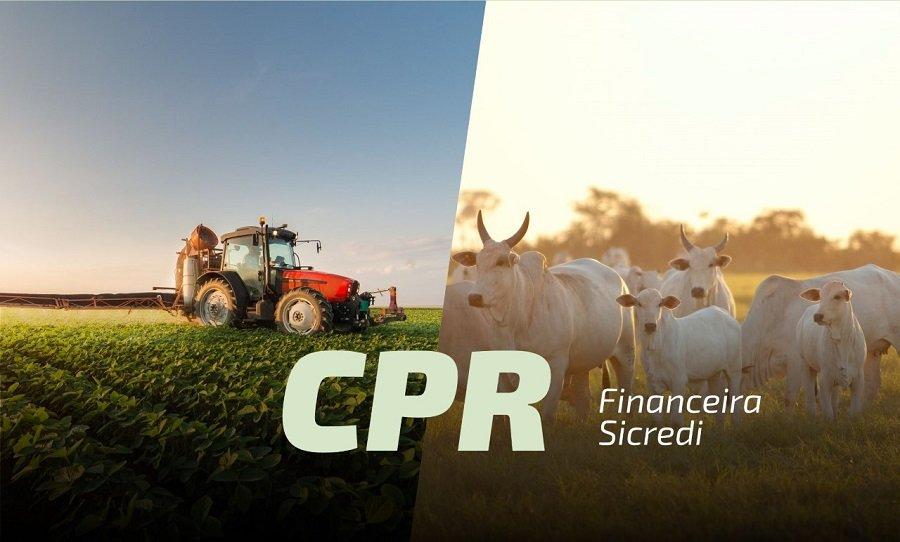 Sicredi disponibiliza CPR para produtores rurais de MT e RO; saiba como acessar esses recursos