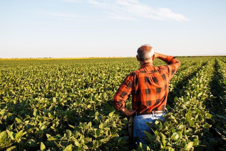 Prazo de adesão ao Programa de Regularização Tributária Rural é adiado