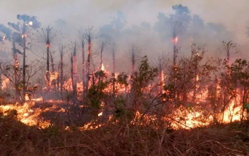 Mais MT vai investir R$ 156 milhões no combate às queimadas, desmatamento ilegal e regularização de imóveis rurais