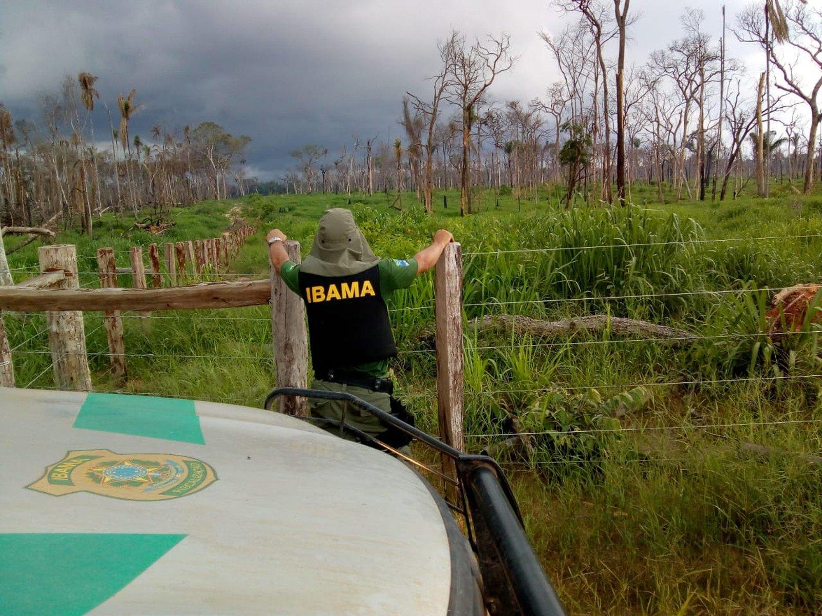 Ibama embarga 8 mil hectares desmatados em MT e aplica quase R$ 40 milhões em multas