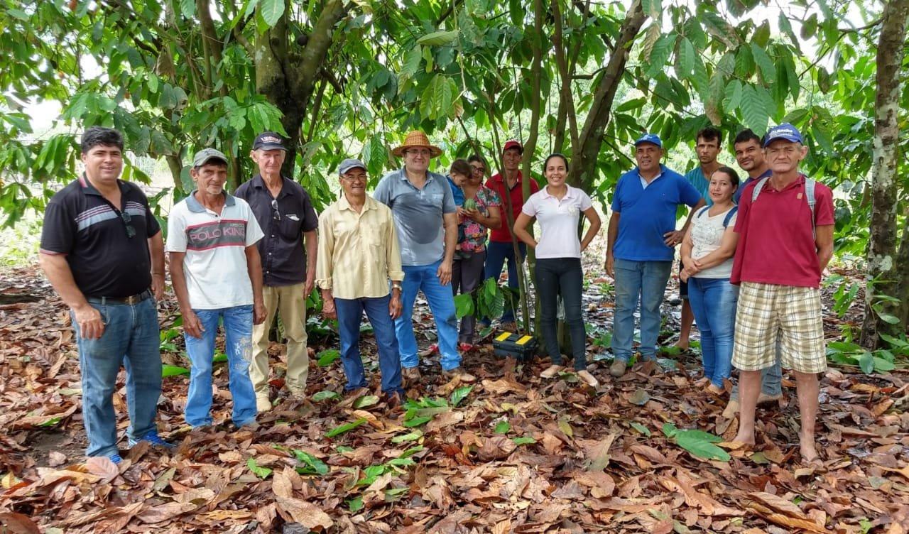 Secretaria de Agricultura de Colniza promove cursos sobre cacau