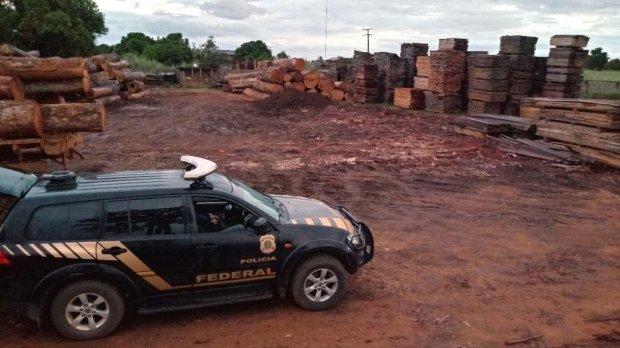 PF deflagra Operação para prender integrantes responsáveis pela extração ilegal de madeiras