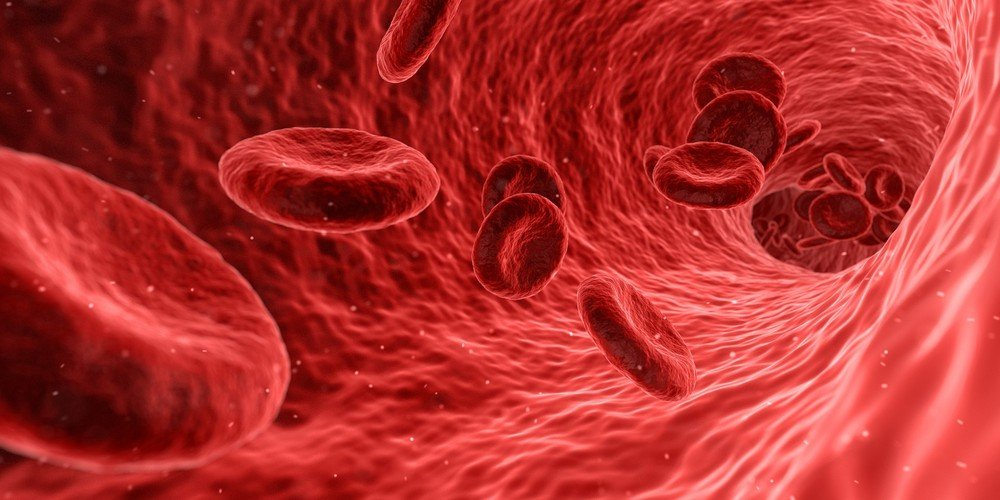 Obesidade eleva risco de câncer: entenda oito processos biológicos que explicam relação com a doença