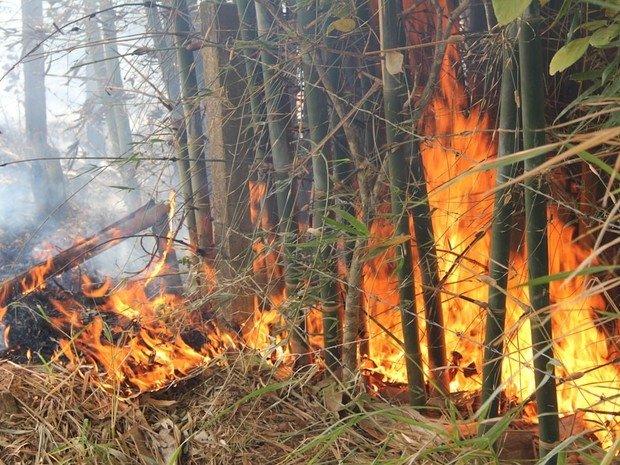 Incêndio atinge chácara em Sinop