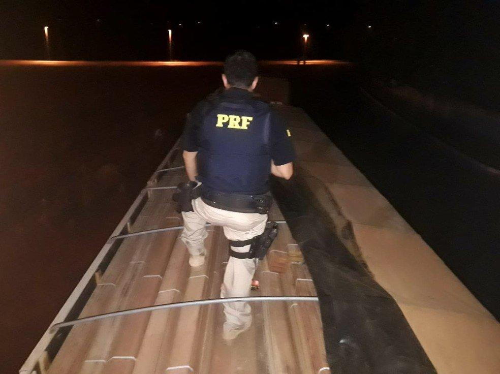 Caminhões com 70 toneladas de madeira ilegal que saíram do Pará são apreendidos em MT