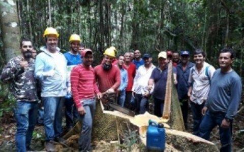 Simno e Senai realizam em Guariba curso de Manejo Florestal com Exploração de Impacto Reduzido