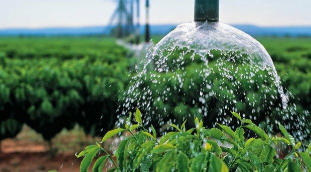 Sindicato Rural de Colniza realizará Curso de Irrigação