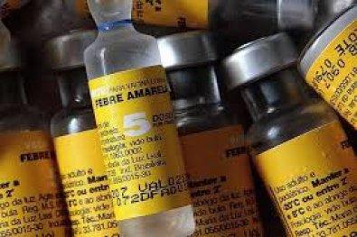 Ministério confirma morte de macaco por febre amarela em MT