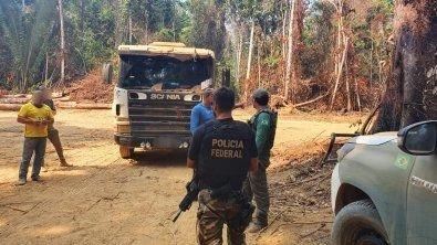 PF combate extração de madeira em área onde vivem indígenas isolados em Colniza