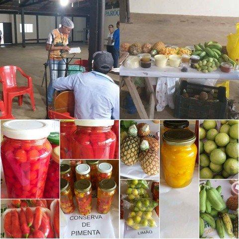 Produtores Rurais de Colniza Fazem Feira Agroecológica